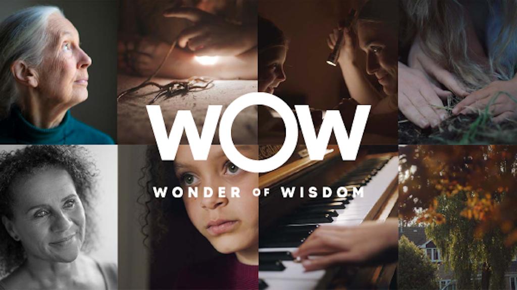 Clarks: Wonder of Wisdom