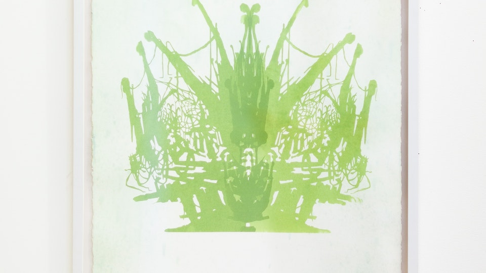 Dewdrop Reflex - DEWDROP REFLEX - MOSS | 22 ½ x 30 inches | variable edition silk screen print with hand coloring (colored ink and iridescent medium) on Arches 88 | 2008