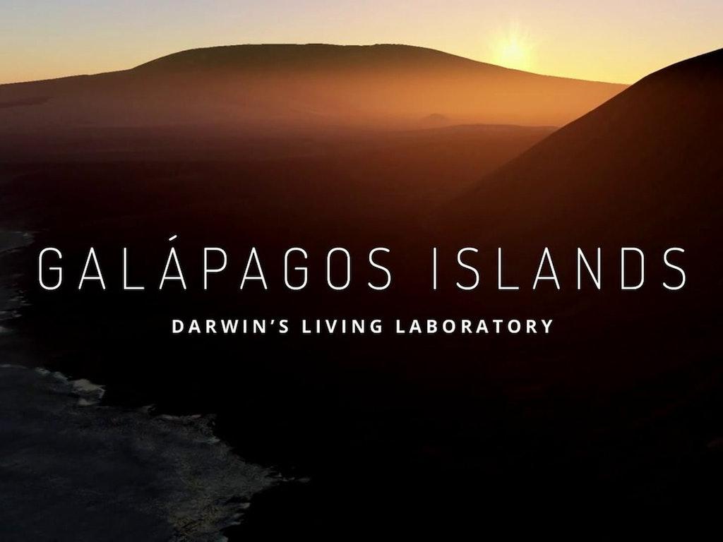 Google Maps - Galapagos