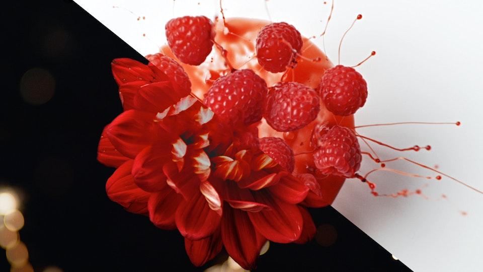 Brookside ● Fruit Flavors