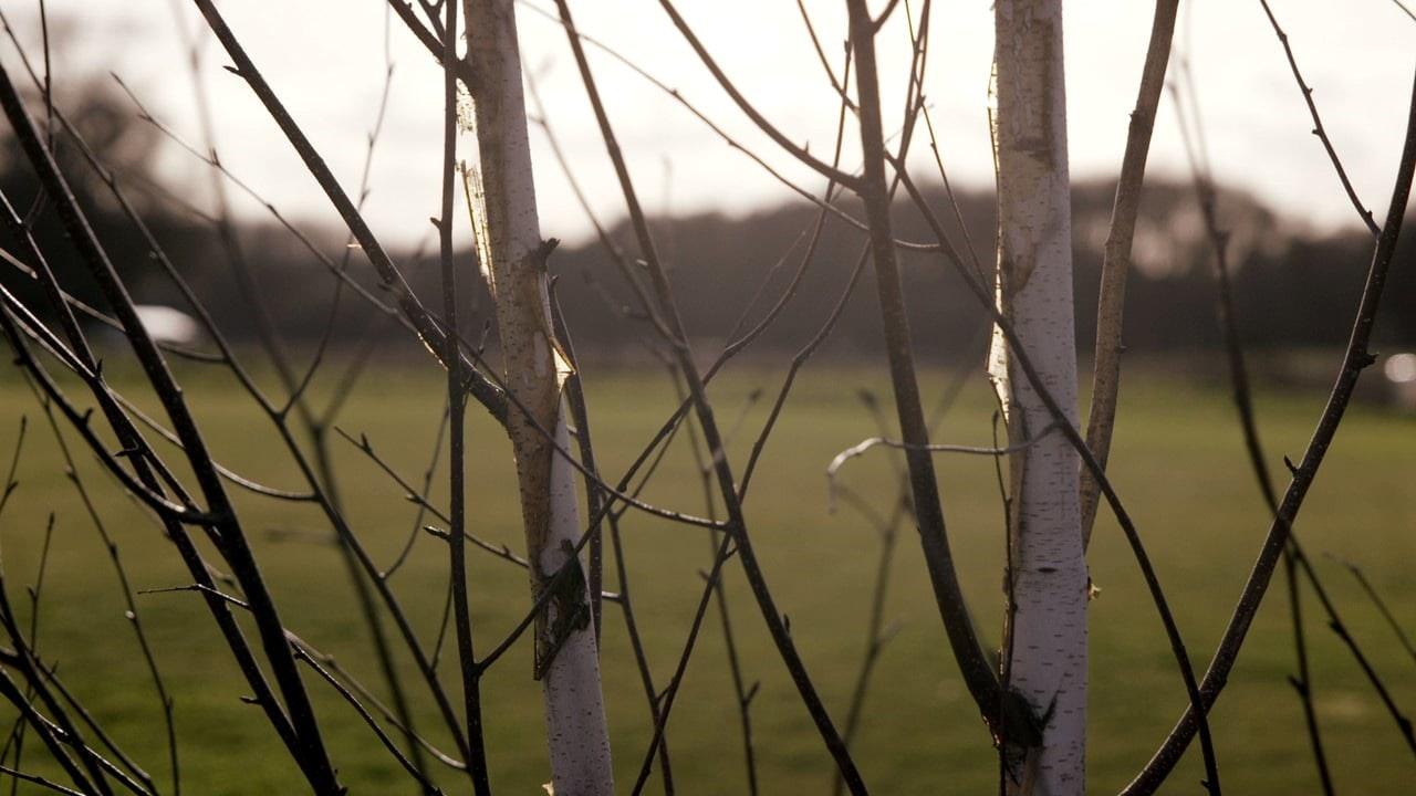 Studio RHE: Wood Farm -