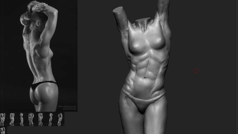 Sketchbook - Work in progress maquette, in ZBrush with references