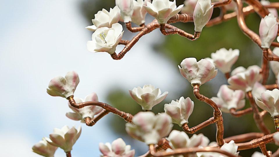 Copper Bloom at Kew Gardens