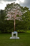 Translations in Light - Featured with the magnificent setting of Kew Gardens, Copper Bloom is shown here with stand detail, which is an optional feature.   The Copper Trunk can also be installed directly into the ground, so a base is not required.