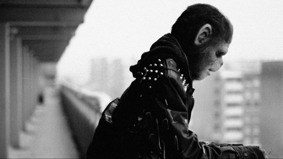 Marcus Lundin Adam Tensta - Like A Punk