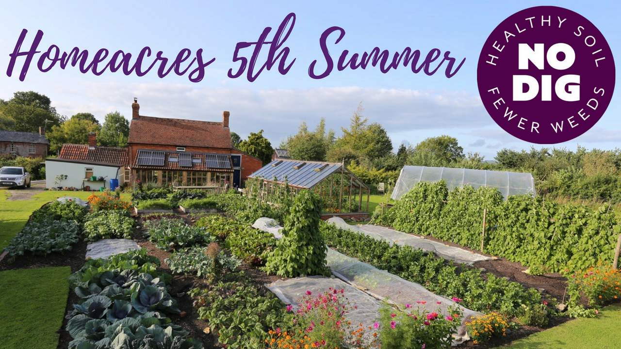 A Tour of Homeacres in its' 5th Summer