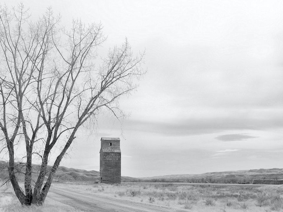 Cam McLean - Prairie Sentinels