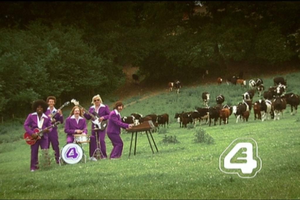 E4 | Cows Ident