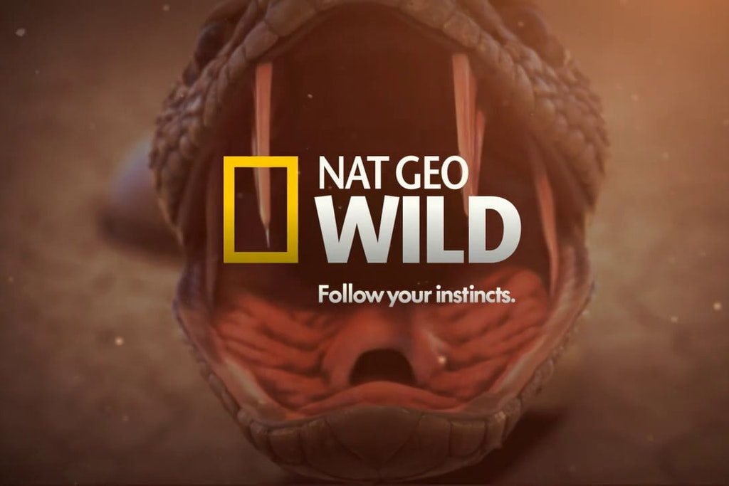NAT GEO | Follow Your Instincts