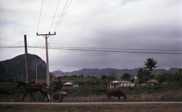 landscape vinales horse