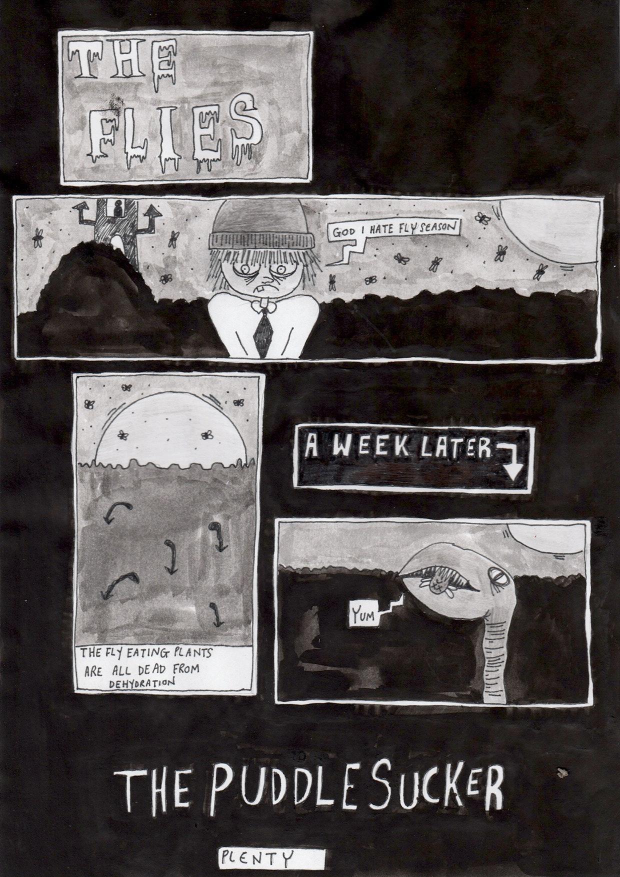 Alexandra Binding - The_Puddle_Sucker_flies