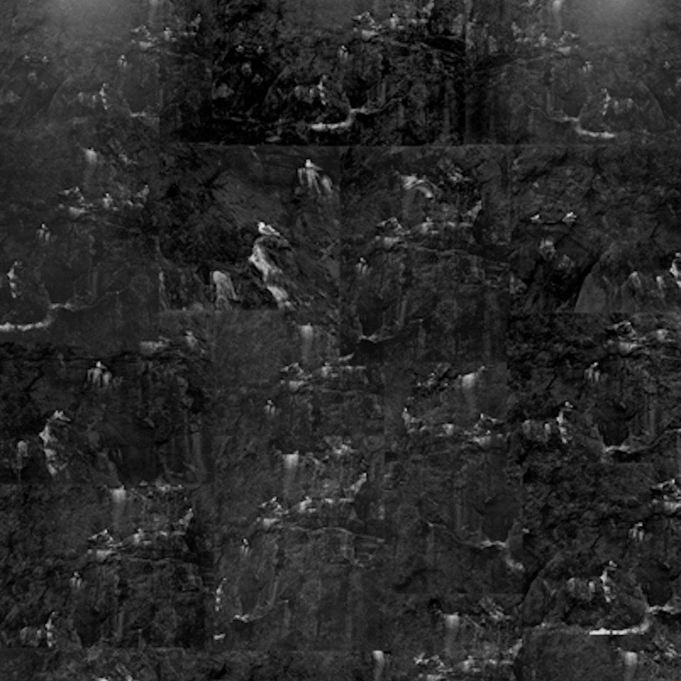 Jantien de Bruin - Meeuwencompositie